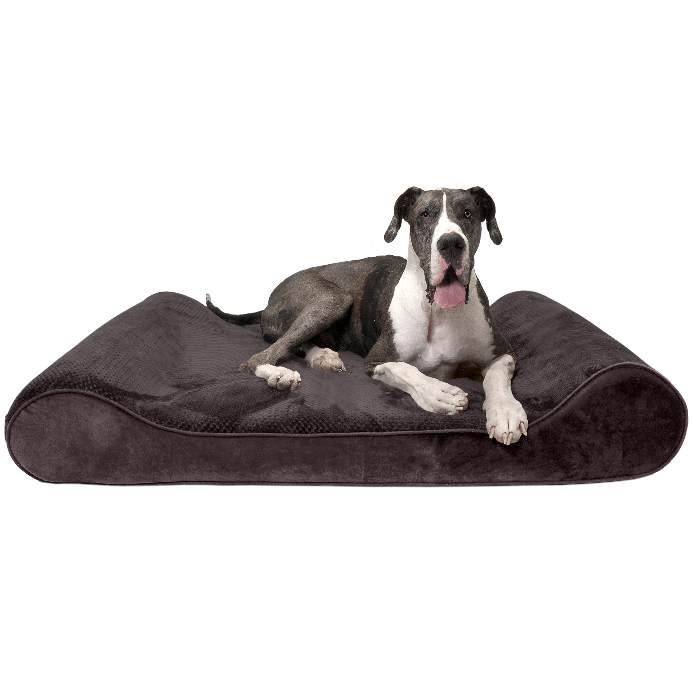 FurHaven Pet Dog Bed | Orthopedic Minky Plush & Velvet Luxe Lounger Pet Bed for Dogs & Cats, Espresso, Giant