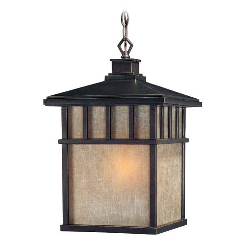 Dolan Designs Barton 1-Light Outdoor Hanging Lantern