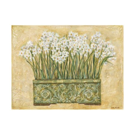 White Narcissus Print Wall Art By Eva -