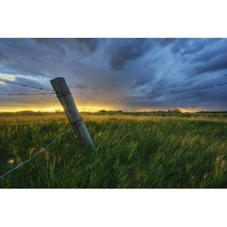 Summer Thunderstorm And Fencepost On A Wheat Farm North Of Edmonton Alberta PosterPrint