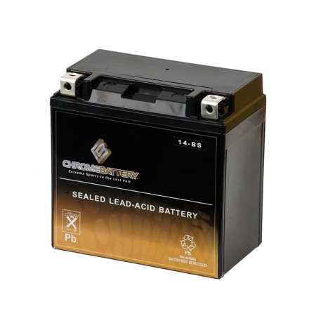 YTX14-BS High Performance - Maintenance Free - Sealed AGM Motorcycle (04 Replacement Motorcycle Battery)