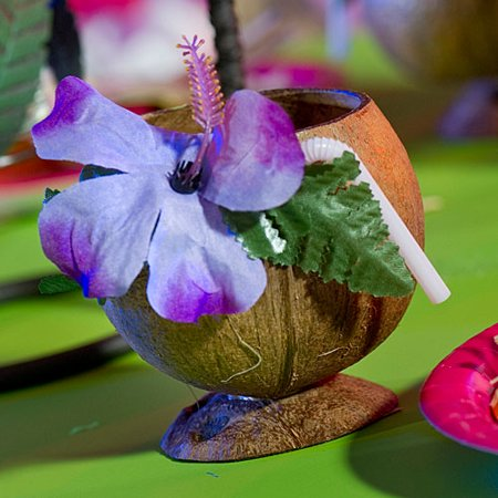 Real Coconut Cup - Coconut Cups
