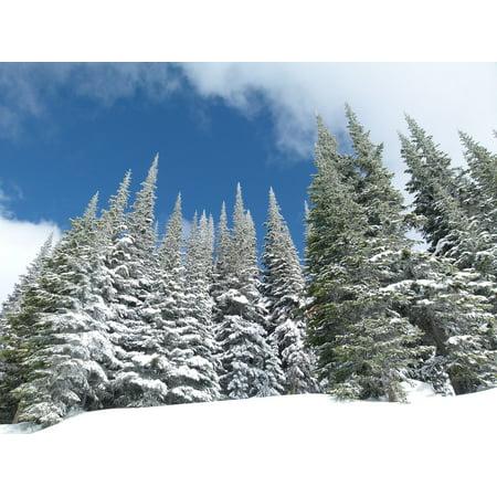 Canvas Print Sun Peaks British Columbia Canada Sport Ski Resort Stretched Canvas 10 x 14 (Canada Ski)