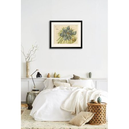 Ophelia Co Blue Lotus Flower Ii Framed Graphic Art Print