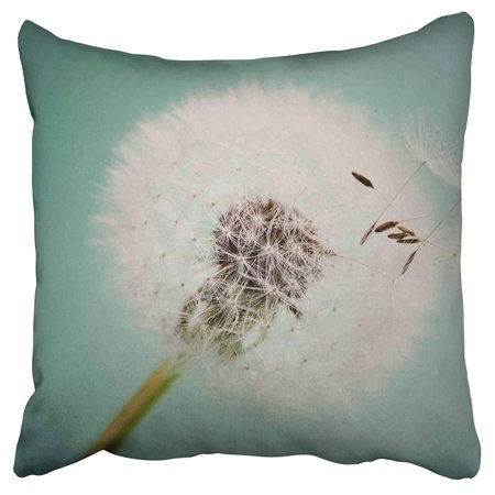 School Dora (ECCOT Beautiful Dandelions Dorm Room Decor Girls Back to School Gifts Pillow Case Pillow Cover 18x18 inch )