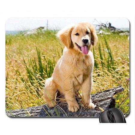 POPCreation GOLDEN RETRIEVER PUPPY Mouse pads Gaming Mouse Pad 9.84x7.87 inches