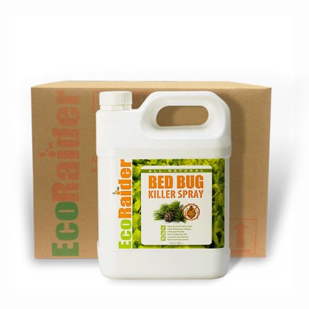Spray Jug (Ecoraider Bed Bug Killer Spray Case of 4 Gallon Jugs, 100% Killing Effeicay with Residual Protection, Green &)