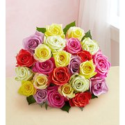 1800Flowers Two Dozen Assorted Roses Flower Bouquet (24 Flowers)