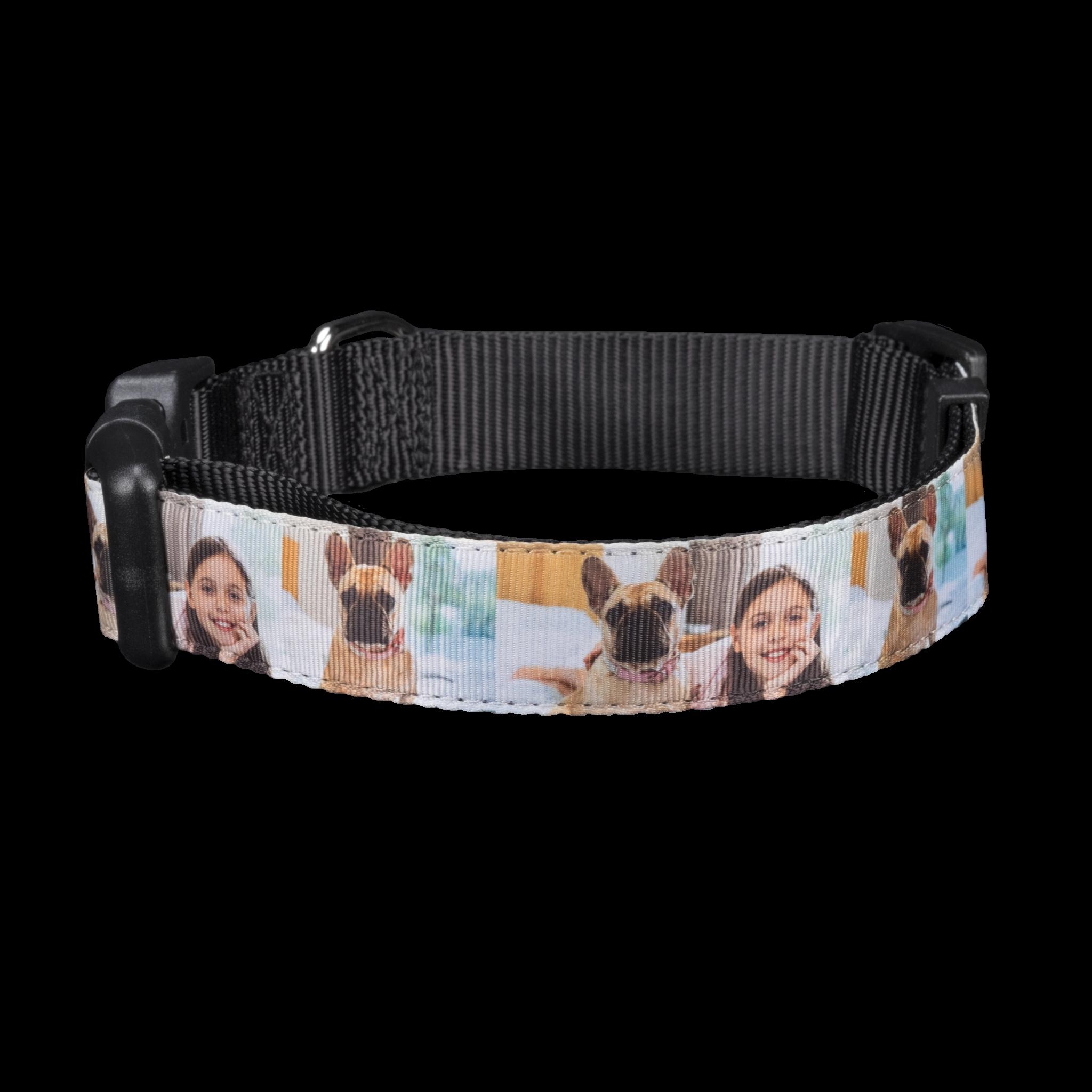 Pet Photo Collar, Large