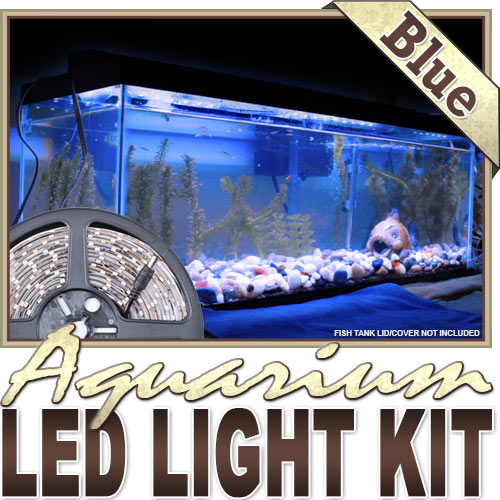 KapscoMoto Kapsco Moto Biltek 6' Ft Blue Aquarium Tank Coral Blue Led Backlight