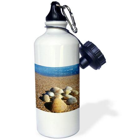 3dRose Seashells, Jacksonville, St. Johns River, Florida - US10 GJO0234 - Greg Johnston, Sports Water Bottle, (St Johns Center Jacksonville)