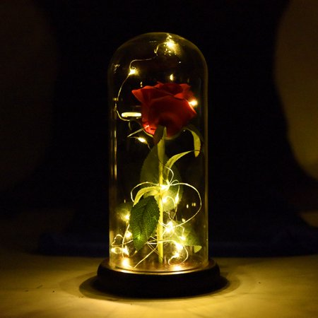 Beauty and The Beast Rose Enchanted Rose,Rose Kit, Red Silk Rose and Led Light with Fallen Petals in Glass Dome on Wooden Base Valentine's Day Anniversary Birthday ()