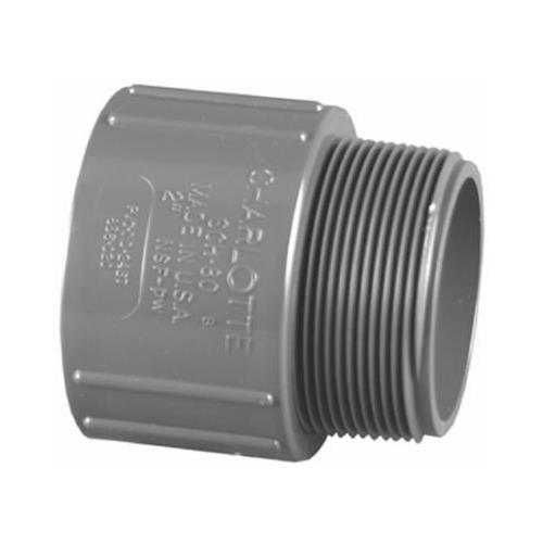 Charlotte Pipe & Foundry PVC 08109  0600HA 1/2-Inch PVC Schedule 80 S x MPT Male Adapter
