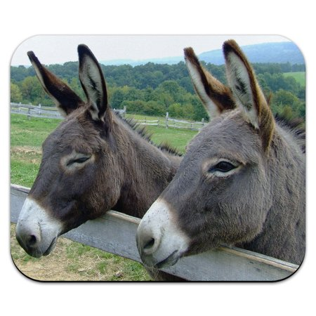 - Donkey at the Farm Field Fence Mouse Pad