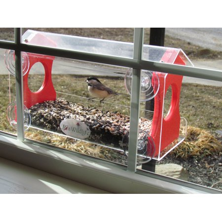 Window Alert Bird - Window Bird Feeder by JCs Wildlife Holds 4 Cups Red Recycled Poly Free Shipping