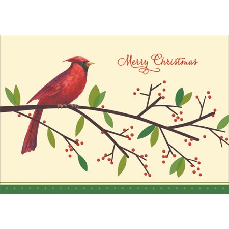 Designer Greetings Cardinal on Branch Box of 18 Christmas Cards ()