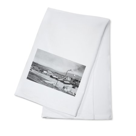 Cascade, Idaho - Aerial View of Lumber Mill (100% Cotton Kitchen Towel)