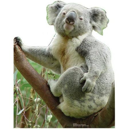 Koala Bear Animal Zoo Decor Lifesize Standup Standee Cardboard Cutout Poster - Stand Up Cardboard Figures