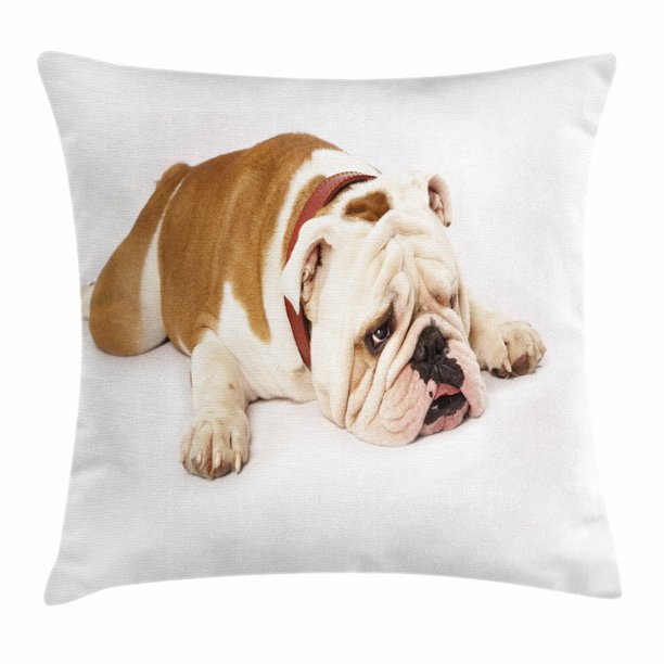 English Bulldog Throw Pillow Cushion Cover Sad And Tired Bulldog Laying Down European Pure Breed Animal Photography Decorative Square Accent Pillow Case 24 X 24 Inches Cream Brown By Ambesonne Walmart Com