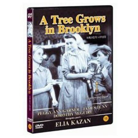 Halloween Events In Brooklyn (A Tree Grows in Brooklyn)