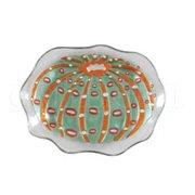 Fiesta Key Sea Urchin Glass Platter