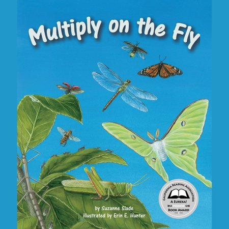 Multiply on the Fly - Audiobook
