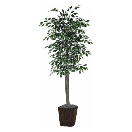 Vickerman 6' Artificial Variegated Ficus Tree in Square Willow Basket