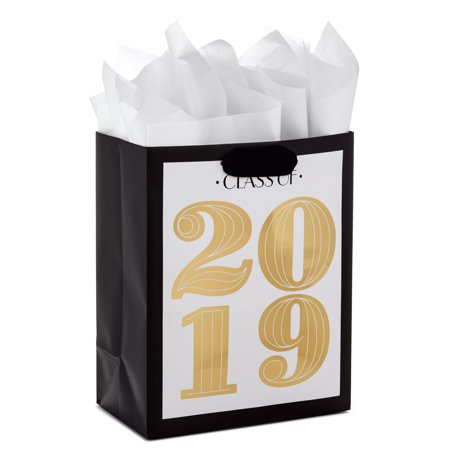 Hallmark Medium Graduation Gift Bag with Tissue Paper (Gold, Class of 2019)](Graduation Gift)
