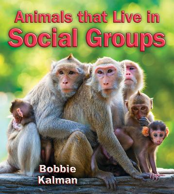 Animals That Live in Social Groups
