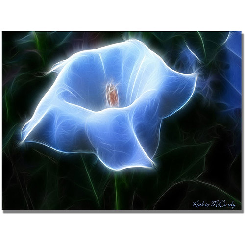 "Trademark Art ""Moonflower Open Big"" Canvas Art by Kathie McCurdy"