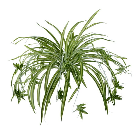 2 Pack Artificial Flowers Spider Plants Fake Silk Plant Faux Greenery Artificial Plants Home Wall Indoor Outdside(Not Include Hanging Basket) ()