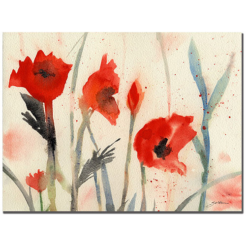 """Trademark Art """"Poppies"""" Canvas Art by Sheila Golden"""