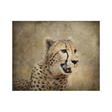 Cheetah Print Wall Art By Jai (Colorful Cheetah Print)