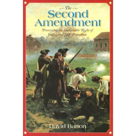 The Second Amendment: (Paperback) (Analyze The Second Amendment To The Constitution)