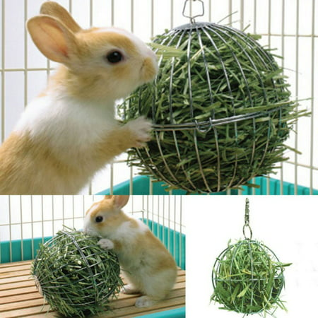 SUPERHOMUSE Pet Supplies Hay Manger Food Ball Stainless Steel Plating Grass Rack Ball for Rabbit Guinea Pig Pet Hamster Supplies Super Pet Hay Manger