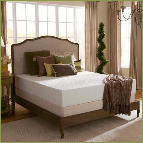Plush Beds Eco Bliss 10'' Latex Foam Medium Mattress