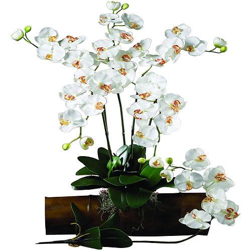 Nearly Natural Phalaenopsis Stem, Cream, 12pc