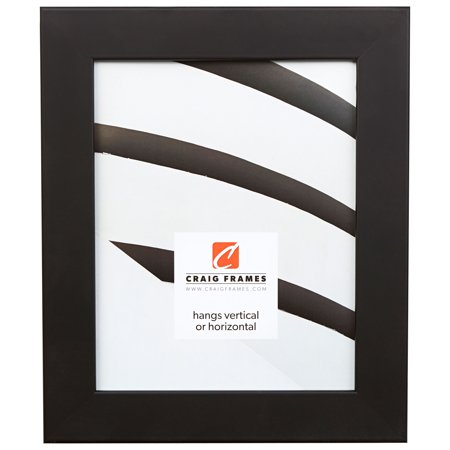 Craig Frames Fiftynine, Gallery Black Picture Frame, 24 x 36 Inch ...