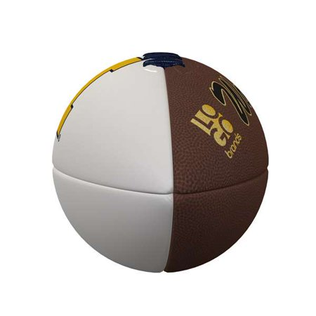 Michigan Wolverines Official-Size Autograph Football ()