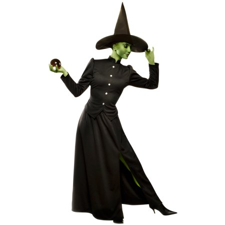 Wicked Witch Plus Size Costume](The Wicked Witch Of The West Costume)