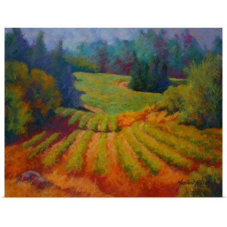 Great BIG Canvas | Rolled Marion Rose Poster Print entitled Vineyard