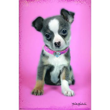Trends International Kimberlin Puppies Wall Poster 22.375