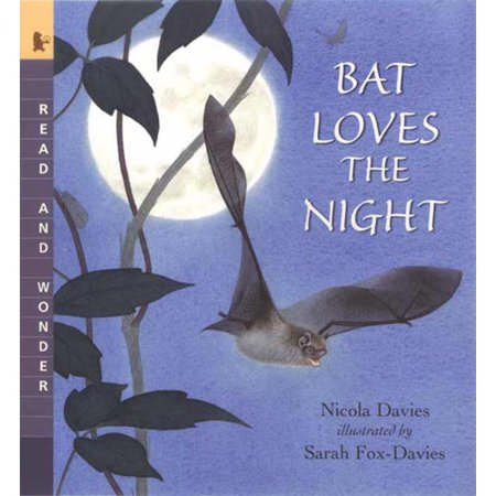 Bat Loves the Night by