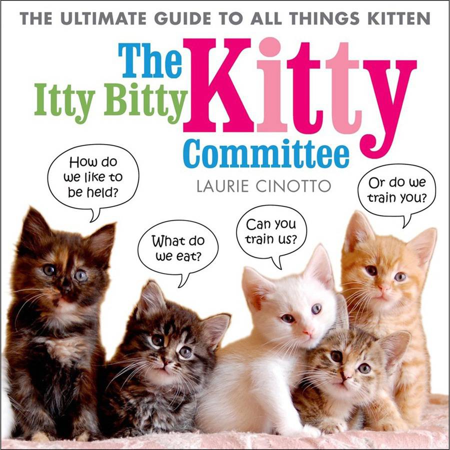 St. Martin's Books The Itty Bitty Kitty Committee
