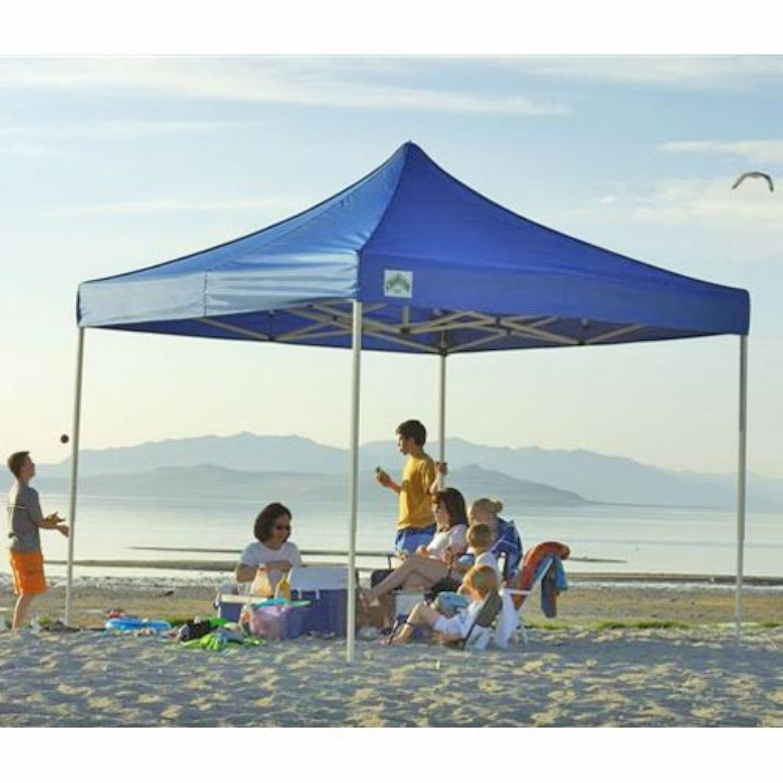 Caravan Sports 8 x 8 ft. Display-Shade 500 Denier Commercial Canopy