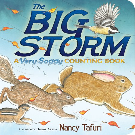The Big Storm  A Very Soggy Counting Book