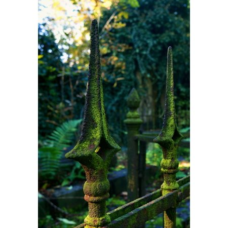 Laminated Poster Fence Nature Green Material Cemetery Plants Poster Print 11 x 17](Halloween Cemetery Fence For Sale)