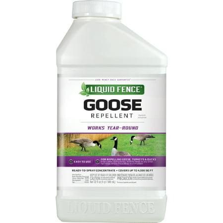 Liquid Fence Goose Repellent Concentrate, 32-Fluid Ounces