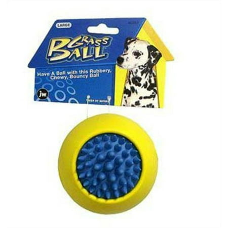 Medium Grass Ball - Company Grass Ball Dog Toy, Large (Colors Vary), Rubbery, chewy and bouncy ball By JW Pet