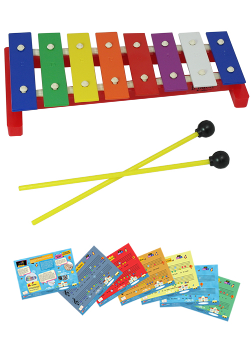 D'Luca 8 Notes Children Xylophone Glockenspiel with Music Cards by D'Luca